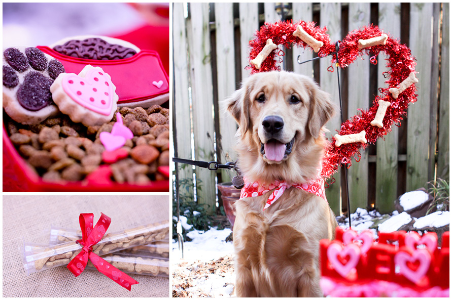 Valentine s day round up live laugh celebrate - Valentines day pictures with puppies ...